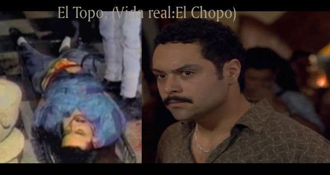 El Capo Fans - .